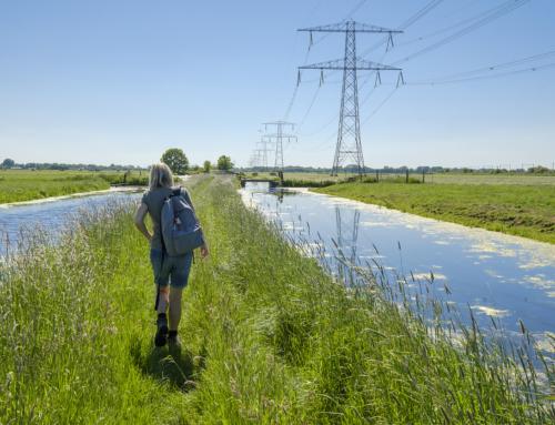 Hoogwaterbeschermingsprogramma: professionalisering processen