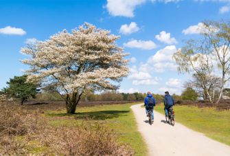 Natuurgebied Noord-Holland