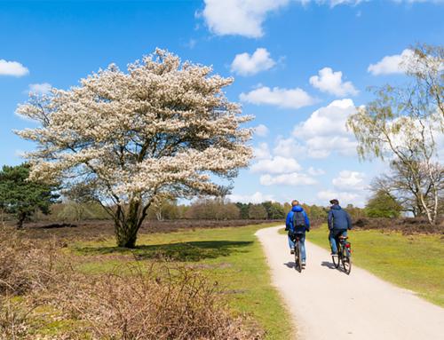 Manager projectbeheersing gebiedscontracten en investeringsprojecten provincie Noord-Holland