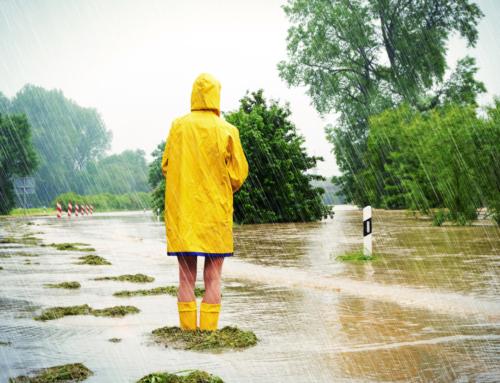 Hoogwaterbeschermingsprogramma Noordelijke Maasvallei