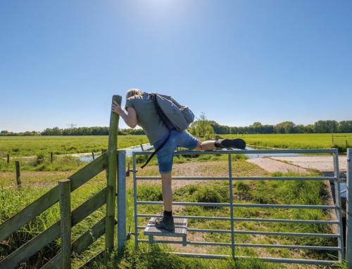 Hoogwaterbeschermingsprogramma: verdieping professionaliseren processen