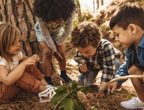 Klimaatadaptatie: meer dan boompjes planten en tegels wippen